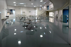 seamless epoxy flooring contractor public municipal space